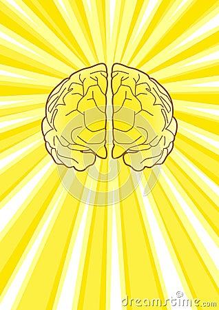 Bright Brain