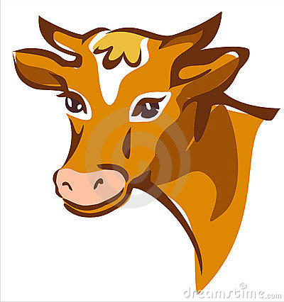 Bright brown smiling cow portrait