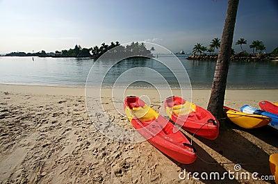 Bright Canoes on Sunny Beach