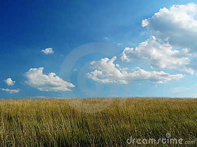 Bright Cloudy sky and farm field