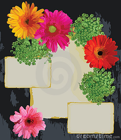 Bright Flowers and old paper on a wood background