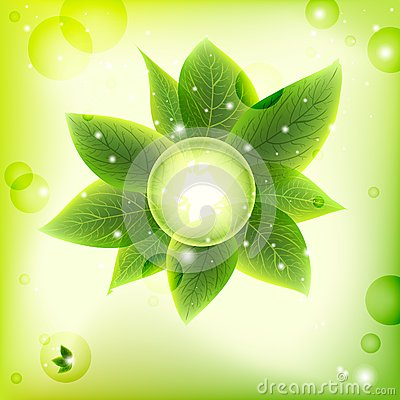 Bright fresh green leaves  background