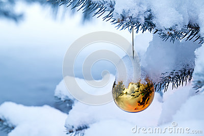 Bright gold ornament hanging from a snow covered C
