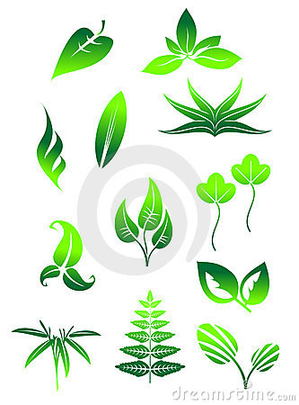 Bright Green Leaves Symbols Royalty Free Stock Image - Image: 22850706