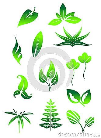Bright green leaves symbols