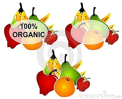 Bright Organic Food Labels