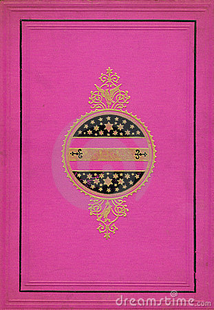 Bright Pink and Gold Decorative Frame