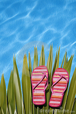 Free Bright Pool Shoes Stock Image - 2582051