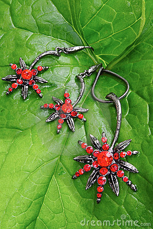 Bright red jewelry on fresh green leave