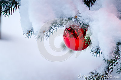 Bright red ornament hanging from a snow covered Ch