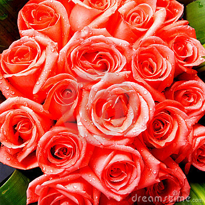 Bright red roses bunch