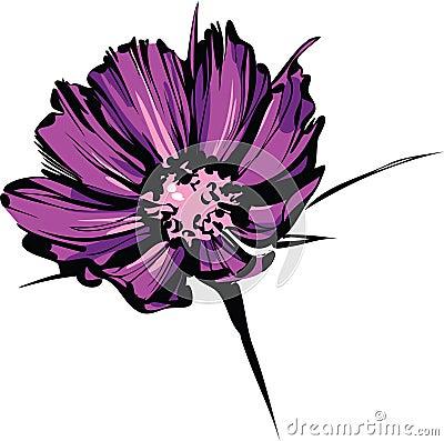 Bright sketch of purple wild flower
