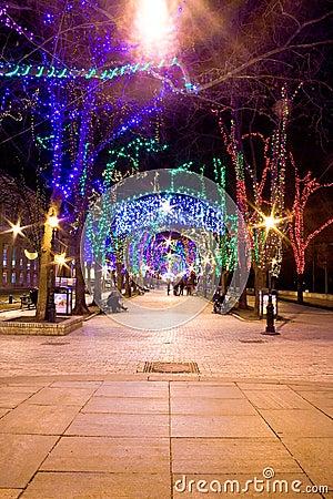 Free Bright Street At Night Royalty Free Stock Photo - 3436555