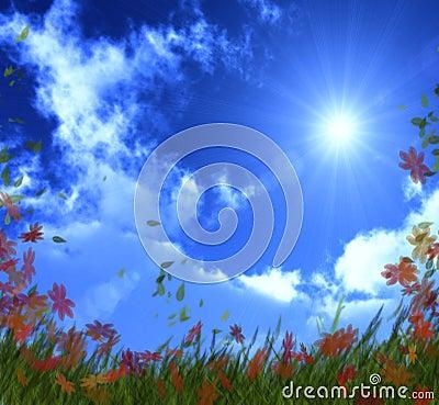 Bright sunny day