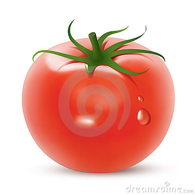 Free Bright Tomato Royalty Free Stock Images - 8166719