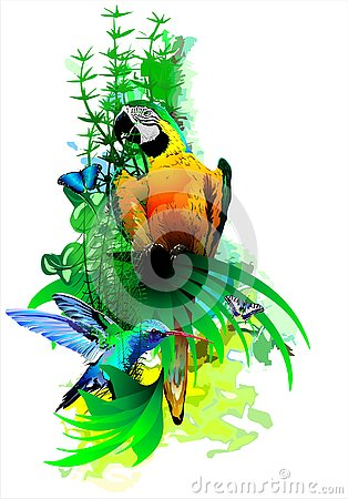 Free Bright Tropical Birds On A White Background. Stock Photography - 133340302