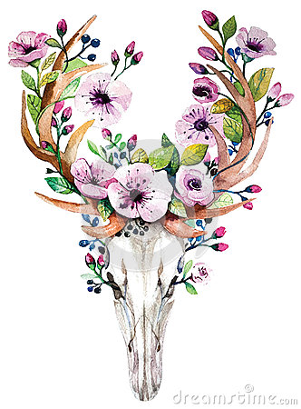 Free Bright Watercolor Vector Deer Skull With Flowers Stock Image - 56787591
