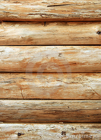 Bright wooden log wall