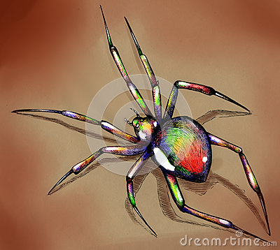 Brightly colored spider