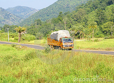 Brightly colored truck passes through rice paddies
