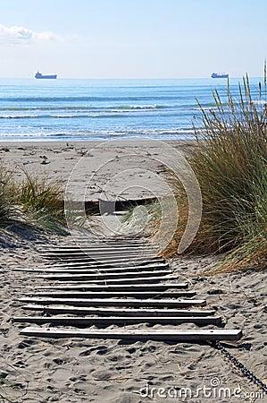 Free Brighton Beach, Christchurch New Zealand Royalty Free Stock Photo - 18713685