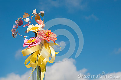 Brilliant flowers with a yellow ribbon