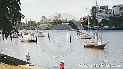 Brisbane, AUSTRALIEN-März, 7, 2017: Brisbane Fluss und Story Brücke von den botanischen Gärten stock video