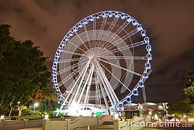 Brisbane City Carousel At Night - Australia