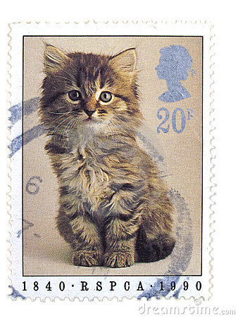 British cat stamp