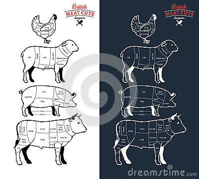 Free British Meat Cuts Diagrams Royalty Free Stock Photography - 59084037