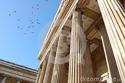 British museum with birds