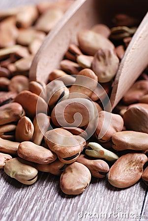 Broad bean dry