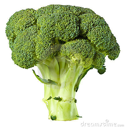 Free Broccoli Stock Photos - 3533263