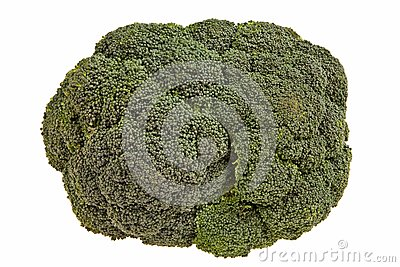 Broccoli flower closeup.