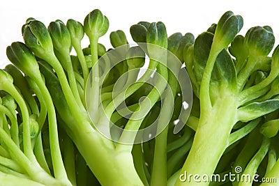 Broccoli macro image
