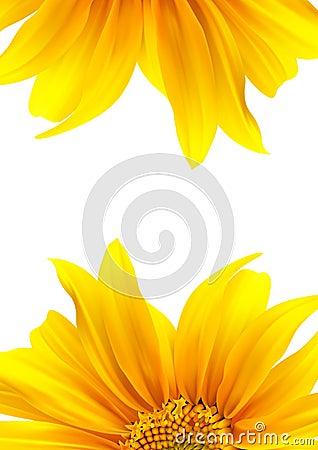 Brochure layout flower design