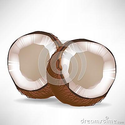 Broken coconuts