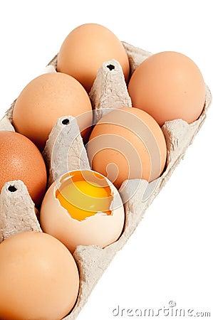Broken Egg in Carton