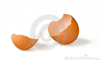 Broken Empty Egg