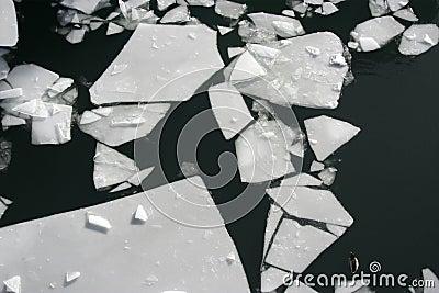 Broken Ice Sheet