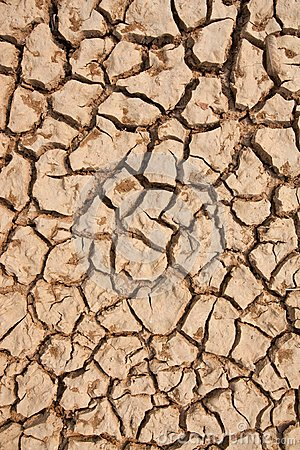 Broken soil in dry season