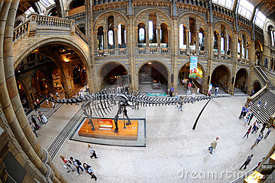 The Brontosaurus skeleton, the hub of the museum Editorial Photo