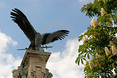 Bronze eagle against blue sky and flowering chestn