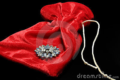 Brooch on velvet bag