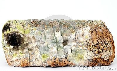 Brood van beschimmeld bruin brood