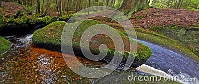 Brook with big stone