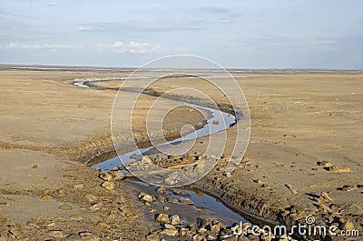 Brook in a deserted land