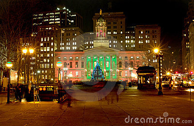Brooklyn Borough Hall Christmas 2010