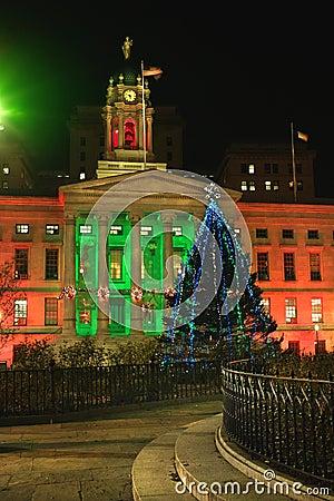 Brooklyn Borough Hall Christmas 2010