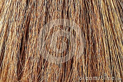 Broom Straw